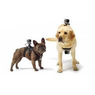 Крепление GoPro на собаку